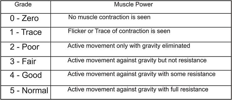 MRC scale as analyzed clinically