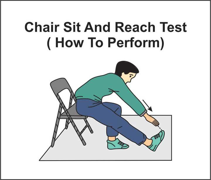 chair-sit-and-reach-test